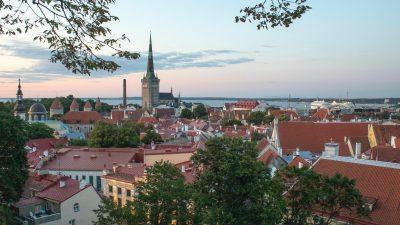 Bootstrapping start-up dansk fintech